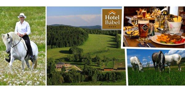 3denní pobyt pro 4 nebo 5 osob ve 4* hotelu v Novohradských horách