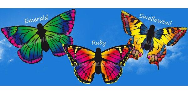 Dětský drak Motýl - výběr ze tří druhů