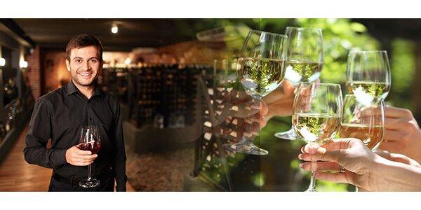 Moderovaná degustace moravských vín