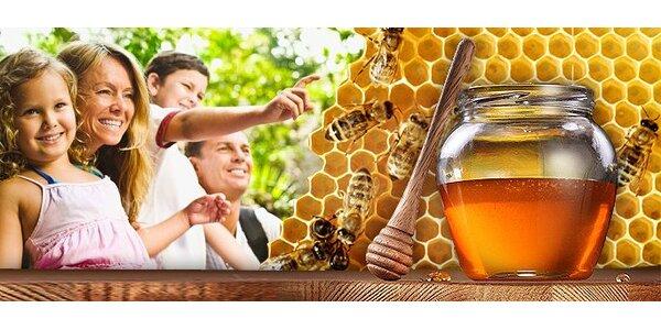 Exkurze do včelařské stanice pro celou rodinu a 950 g medu.