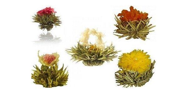149 Kč za sadu kvetoucích čajů 5 ks - v dárkovém balení - různé druhy
