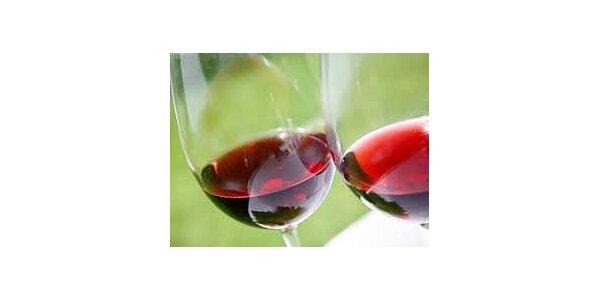 30 Kč dvě sklenky přívlastkového vína za cenu jedné