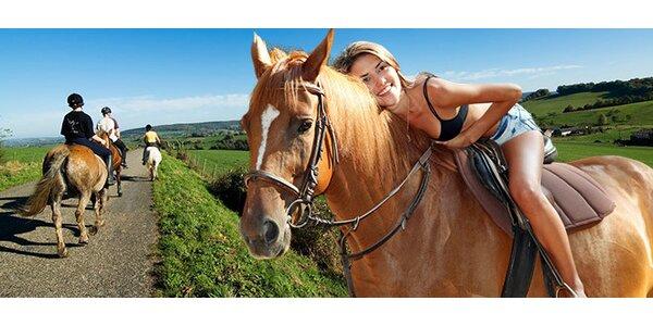 Hodinová vyjížďka přírodou na koni nedaleko Benešova