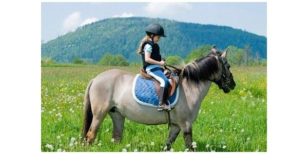 Výuka jízdy na koni pro děti všeho věku v hodnotě 500 Kč