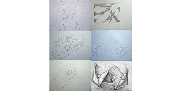 1400 kč za Kurz kreslení pravou mozkovou hemisférou v hodnotě 2800 Kč