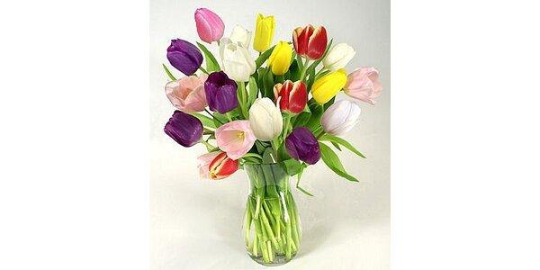 275 Kč za 19 čerstvých a kvalitních tulipánu i teď v zimě v hodnotě 550 Kč