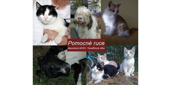 Přispějte 50 Kč a podpořte depozitum pro opuštěná a zraněná zvířátka