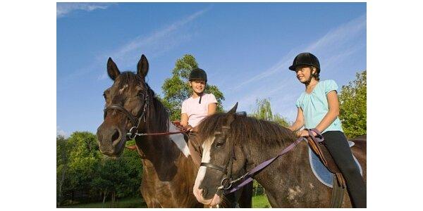 300 Kč za projížďku na koni v přírodě v okolí Konopiště v hodnotě 400 Kč