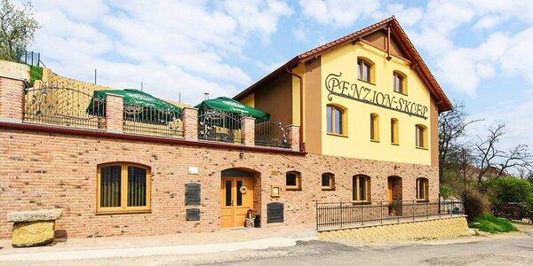 Pobyt plný vína a výletů na kolech po jižní Moravě