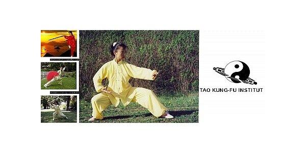 Letní kurz Tai-či pro úplné začátečníky vedený mistryní Zhai Jun, Praha 9