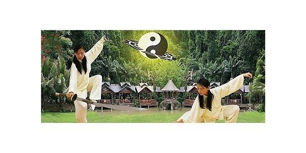 Letní kurz Tai-či pro začátečníky vedený mistryní Zhai Jun - začínáme dnes