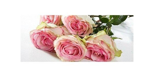 Jen 199 Kč za kytici pěti růží s rozvozem zdarma po Olomouci a Prostějově