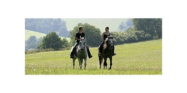 Hodinová vyjížďka na koních pro dva krásnou posázavskou krajinou