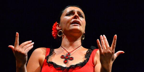 Vstupenka na koncert Španělský večer s Carmen