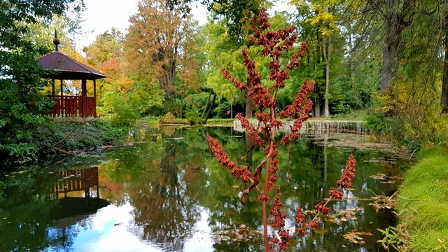 Kámoni arboretum v Szombathely
