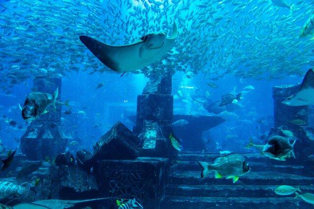 Největší akvárium světa