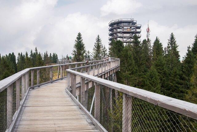 Chodník korunami stromů Bachledka