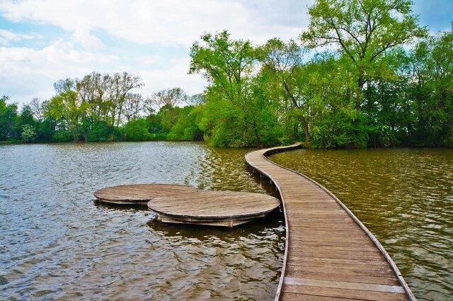 Vestecký rybník