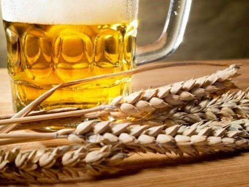 Slavnosti piva v Královském pivovaru Krušovice 2020 - zrušeno