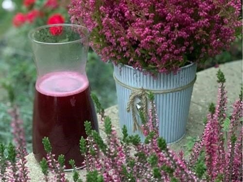 Svatováclavské dny v zahradě