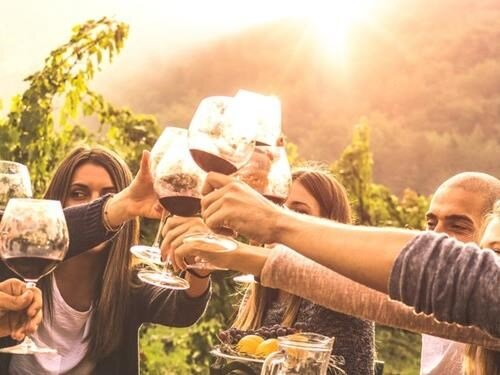 Večerní řízená degustace vín na nádvoří Znojemského podzemí
