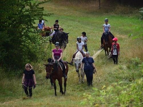 Putování s koňmi