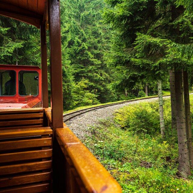 Oravská lesní železnice