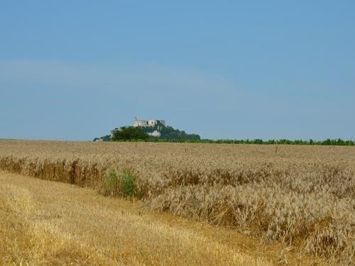Turistbus - vyhlídková jízda jihomoravskými vinařskými obcemi