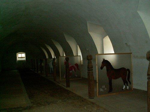 Člověk a kůň – výstava na zámku Lemberk