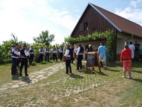 Krajem vína – Tour de burčák po vinařských stezkách Kyjovska