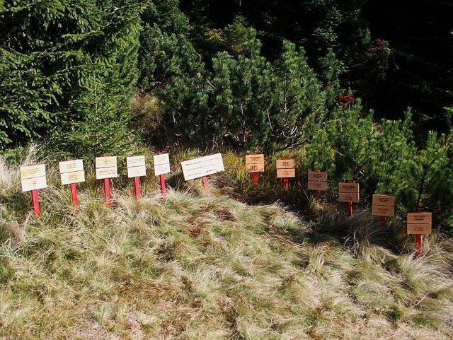 Hřbitov odpadků
