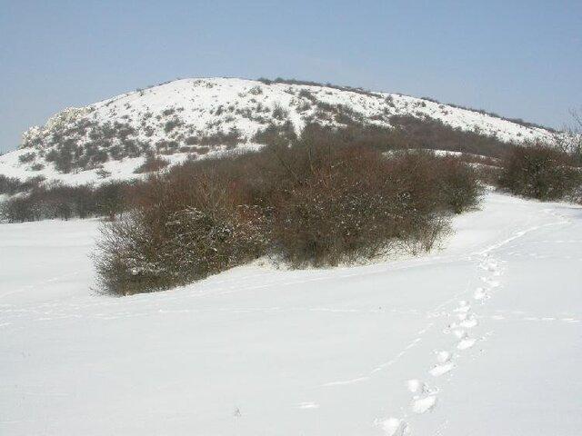 Stolová hora