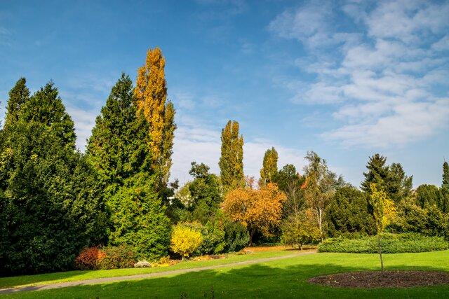 Botanická záhrada v Bratislave