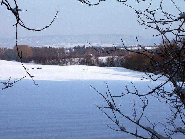Běžkařské trasy ze Sněžníku