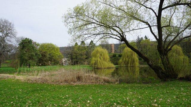 Zámecký park Čechy pod Kosířem