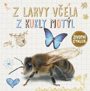 Z larvy včela, z kukly motýl
