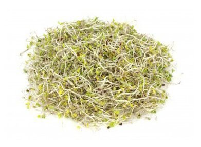 Brokolice – semena na klíčky, 10 g