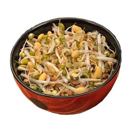 Čínská směs – semena na klíčky, 40 g