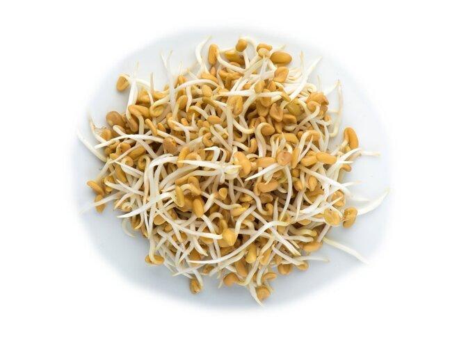 Pískavice – semena na klíčky, 20 g