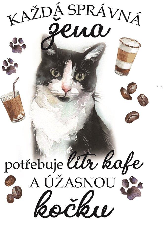 Černobílá kočka