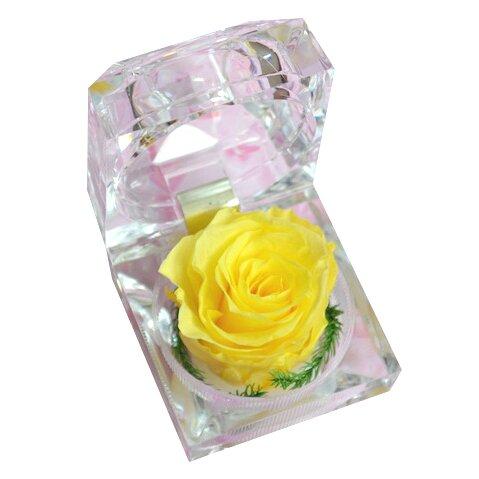 Nesmrtelná žlutá růže