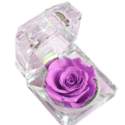 Nesmrtelná fialová růže