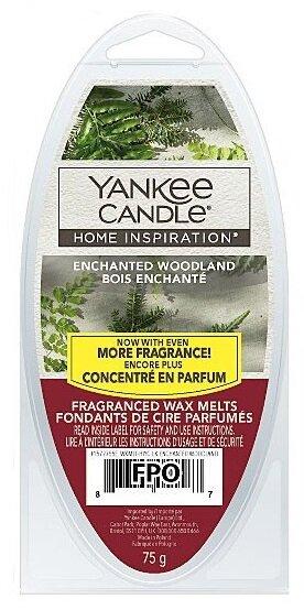 Yankee Candle Enchanting Woodland - vosk 75 g