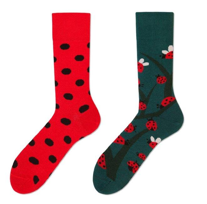 Vysoké ponožky - Berušky