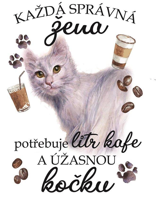 Turecká angora kočka