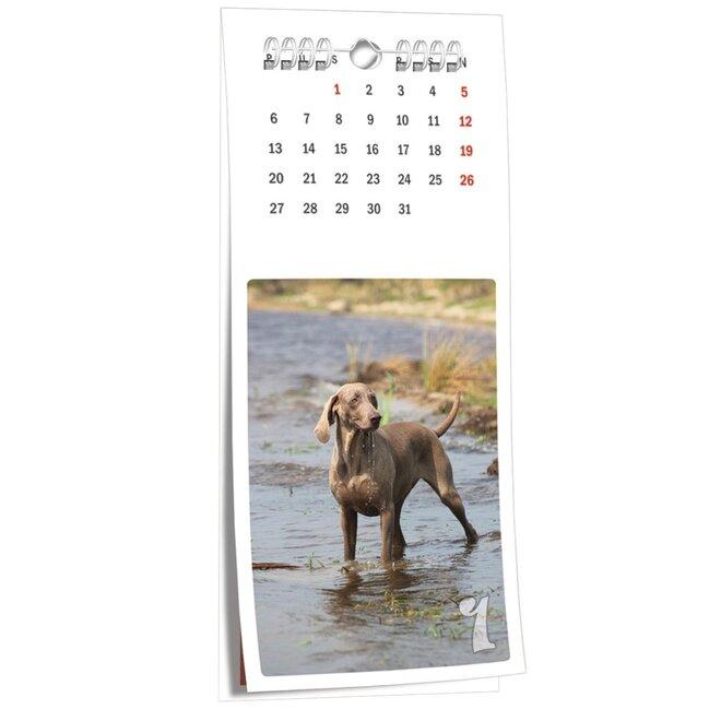 Vázankový fotokalendář NKN-58