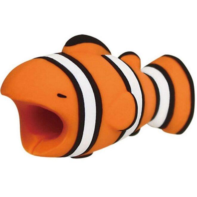 Rybka klaun