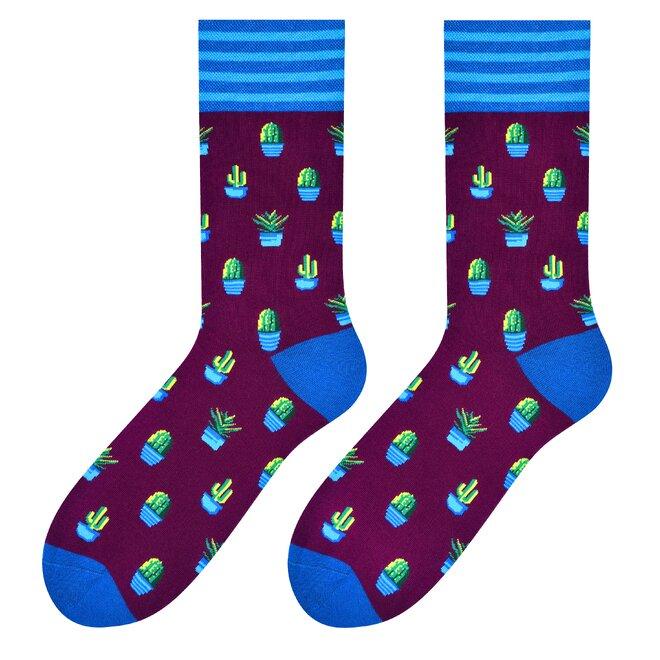 Pánské vysoké ponožky - kaktus