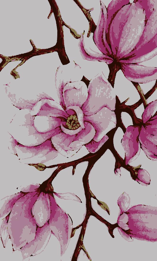 Něžná magnolie