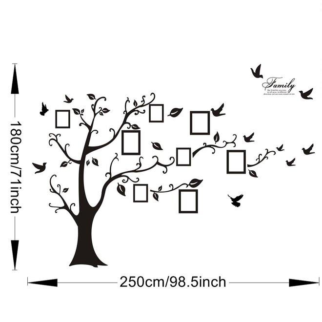 Strom XXL na fotky
